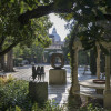 Visit the Guggenheim Garden in Venice with a private tour
