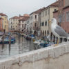 Visit Chioggia with Venice Southern Lagoon private guided tour