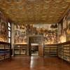 Venice St. Mark's Grand Fraternity