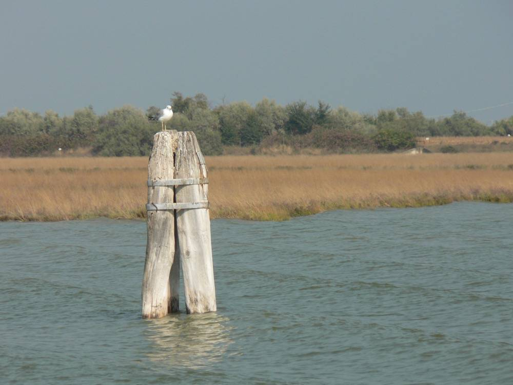 Venice Lagoon and Mainland